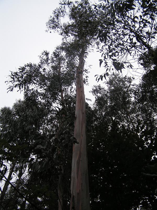 2006-09-25-002.JPG