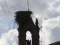 2006-09-14-033.JPG