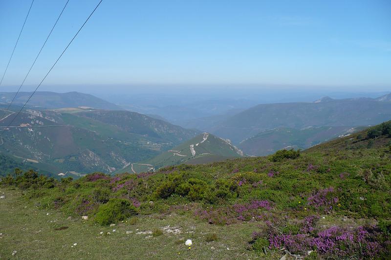 2007-07-13-014.JPG